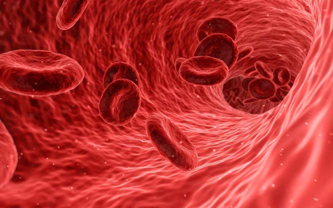 Der Blutzuckerspiegel und seine Auswirkungen